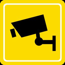 digital crimes